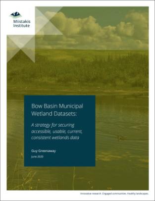 Municipal Wetlands Data Strategy