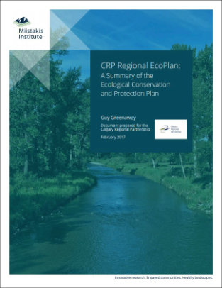 CRP Regional Ecoplan