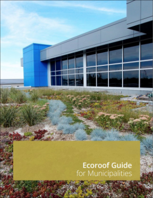 Urban Ecoroofs