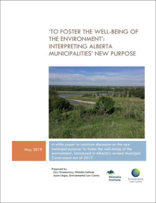 Municipal Environmental Purpose